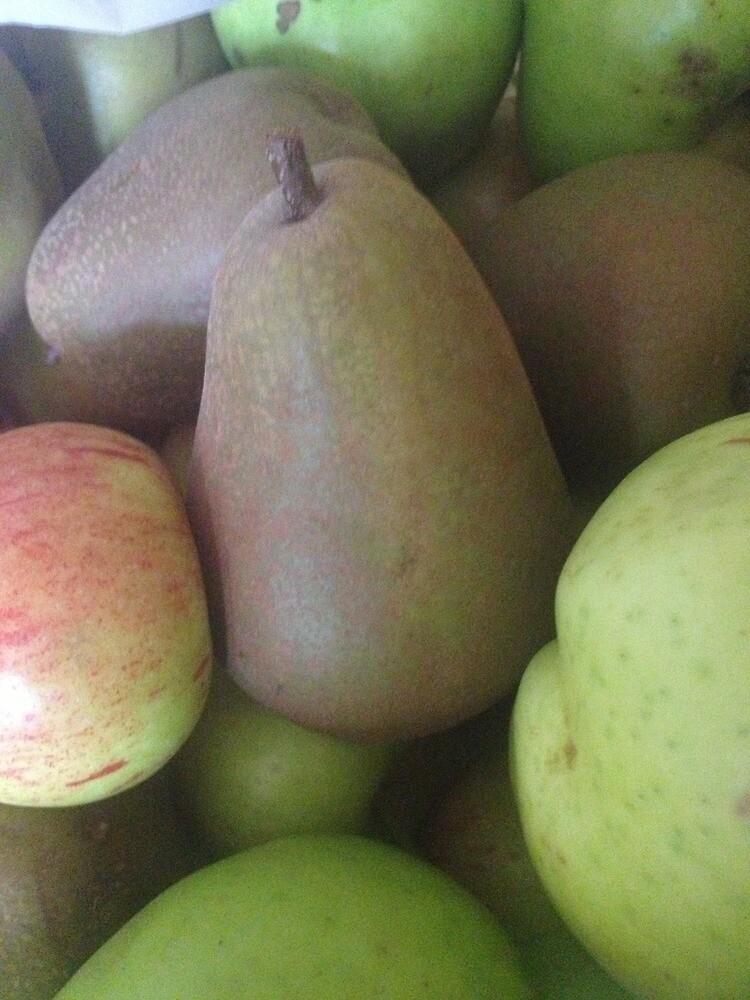 Fruit by Robert Steadman