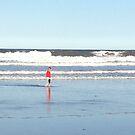 On the beach by Robert Steadman