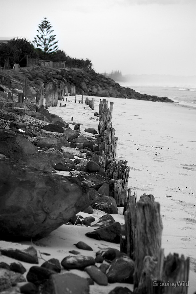lennox head seven mile beach_3 by GrowingWild