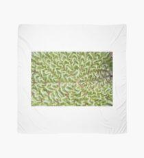 wrinkled leaf Scarf