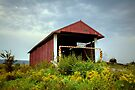 Hay Fever at the Hayes Covered Bridge by Gene Walls