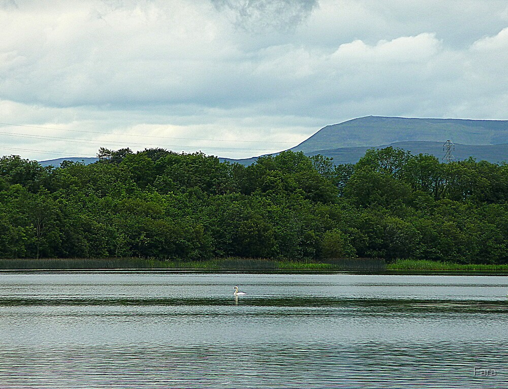 Benbulben from Lough Erne by Fara