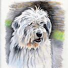 Barney by Maureen Sparling