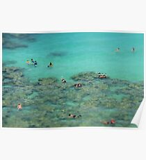 Snorkelling - travel photography print Poster