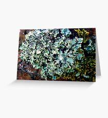 Lichen # 43 Greeting Card