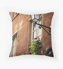 Life on a windowsill - photography print Throw Pillow