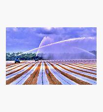 Irrigation Colors Photographic Print