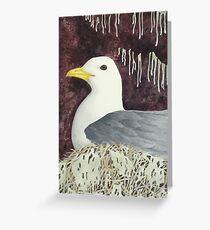 The Black-Legged Kittiwake Greeting Card