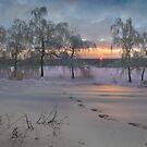 Winter Land by Igor Zenin
