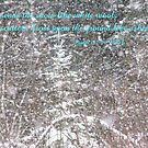 Snow--Psalm 147:16 by MaeBelle