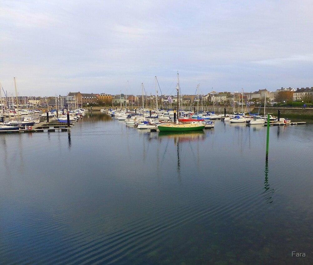 Bangor Harbour And Marina by Fara