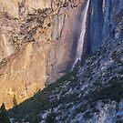 New Beginnings - Yosemite National Park, CA by Matthew Kocin