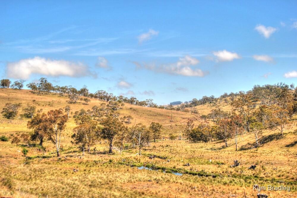 Australian Country Side by Kym Bradley
