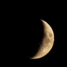 Waxing Crescent by Brendan Schoon