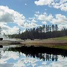 Reflections of Yellowstone by Penny Fawver