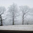Blue Ridge Parkway Winter by RayDevlin
