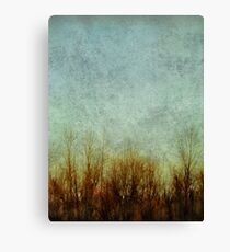 Brush Fire Canvas Print