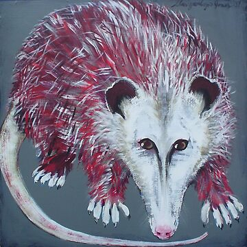 Opossum by Maryevelyn