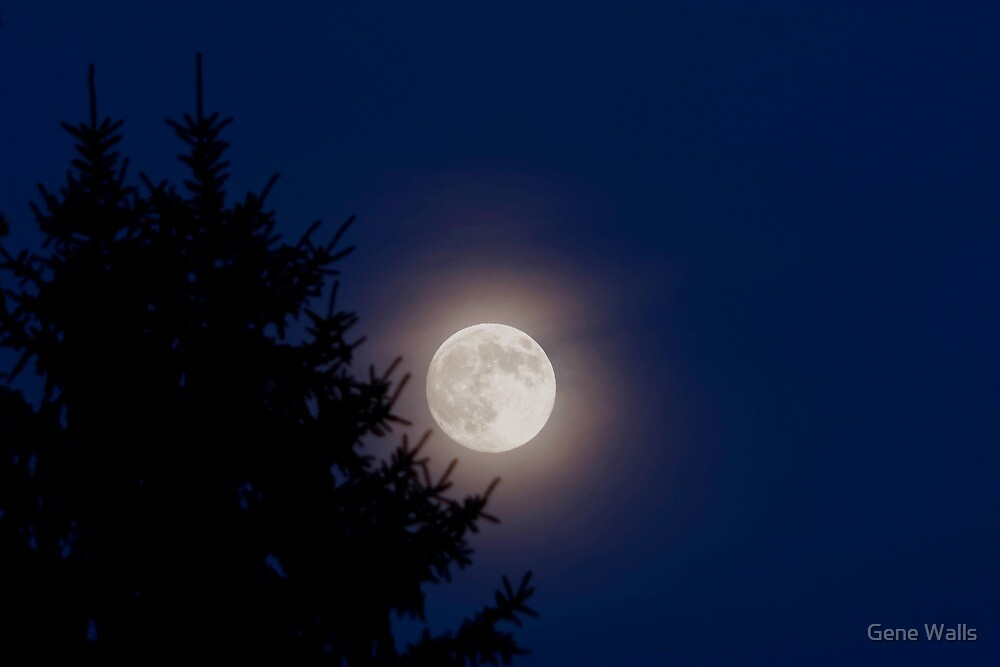 Lunar Luminance by Gene Walls