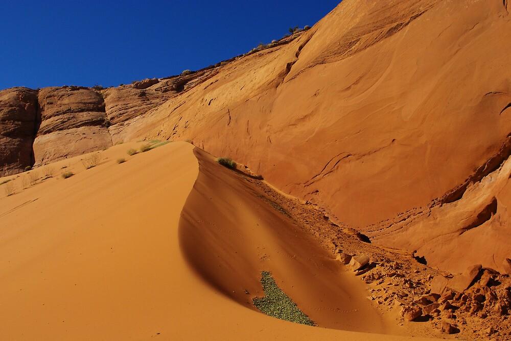 Dune near Peek-A-Boo Slot Canyon, Utah by Claudio Del Luongo