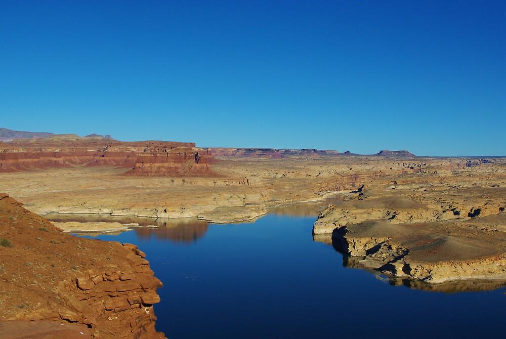 View of Colorado River from Hite overlook, Utah by Claudio Del Luongo