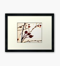 Berries 1 -Fall Foliage Series Framed Print