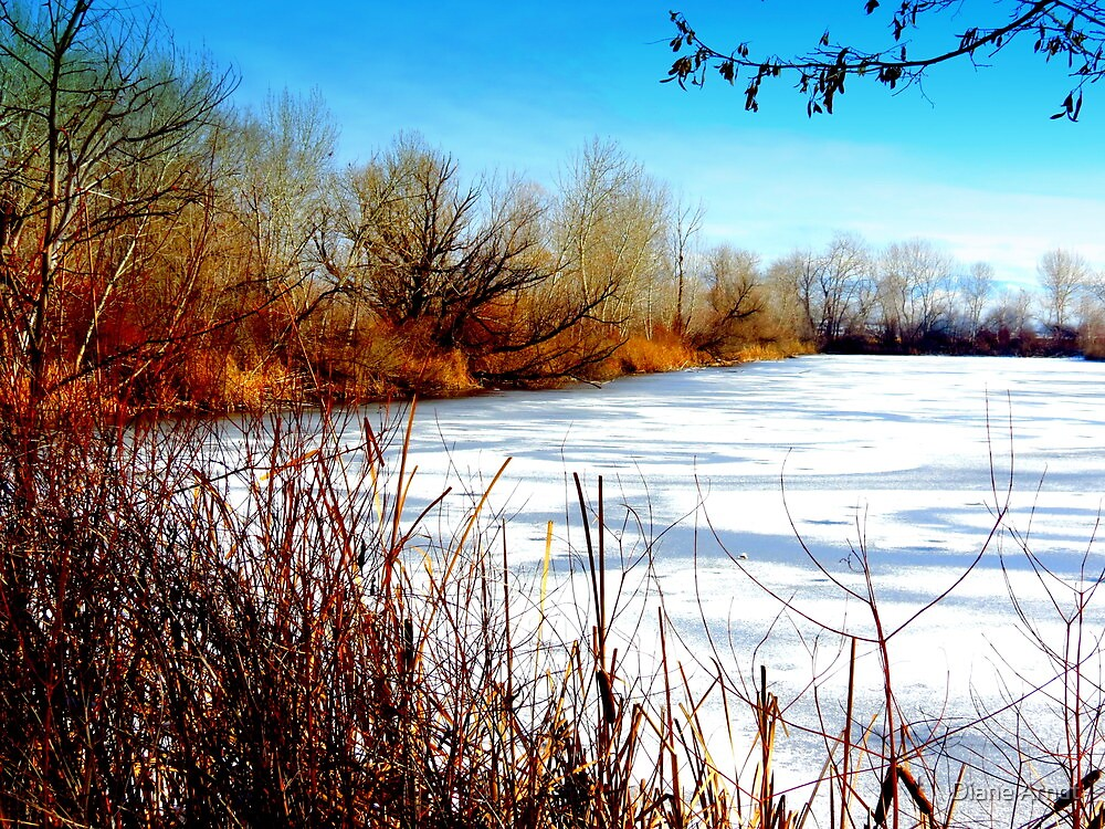 Winter At Duff Pond by Diane Arndt