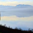 Lake Hallwyl, Switzerland, by Daidalos