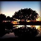 Shadow pond by Doug Bonner
