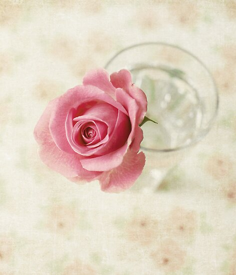 Vintage Textured Rose  by Nicola  Pearson