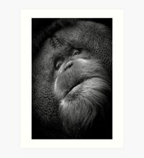 A sage Orangutan preparing to share something wise.  Art Print