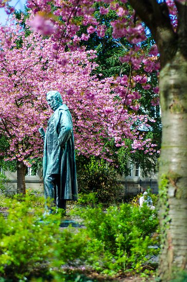 A Spring view on Mr. Bunsen by drawwithlight