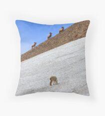 Cruising Rams Throw Pillow