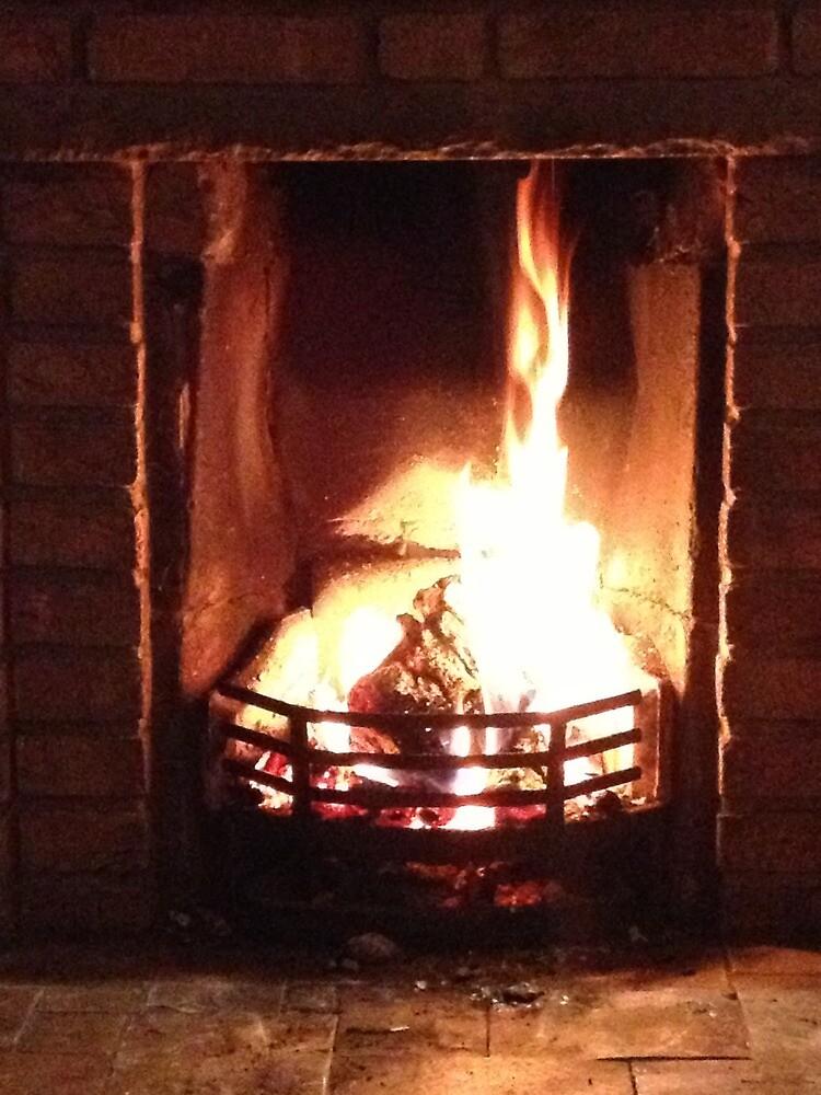 Fire by Robert Steadman