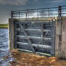 Floodgate by Peter Wiggerman