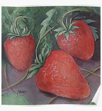 Strawberry Fields Poster