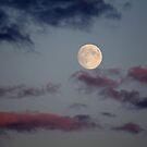 Harvest Moon's Abundance in view . by vonniepyn