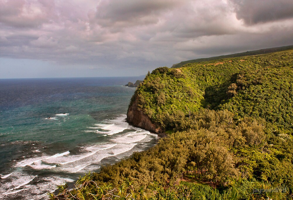 Pololu Valley Big Island Hawaii by jayneeldred
