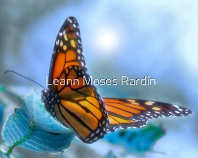On Gossamer Wings by Leann Moses Rardin