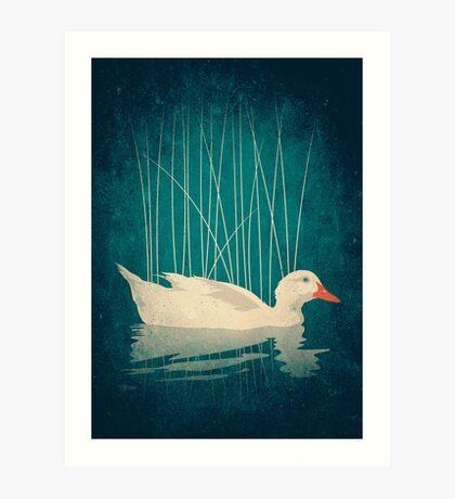 Duck Reflected Art Print