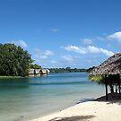 Vanuatu Huts by Marcia Luly