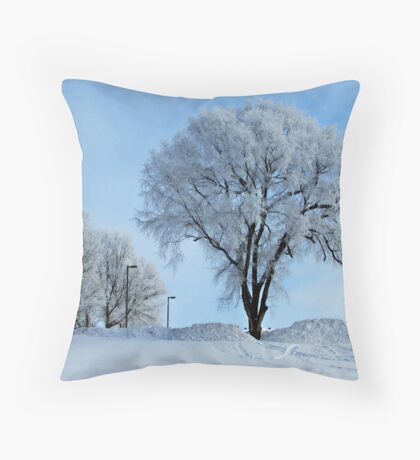 Winter Frosting Throw Pillow