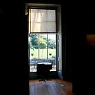 Palace Window by babibell