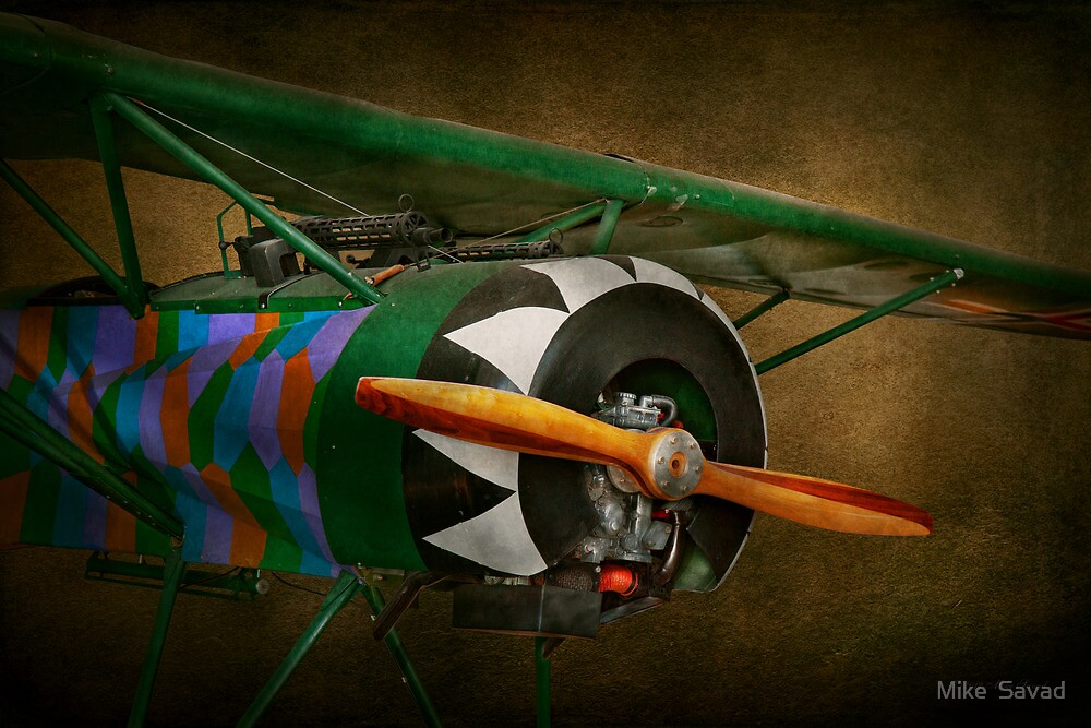 Pilot - Plane - German WW1 Fighter - Fokker D VIII by Michael Savad