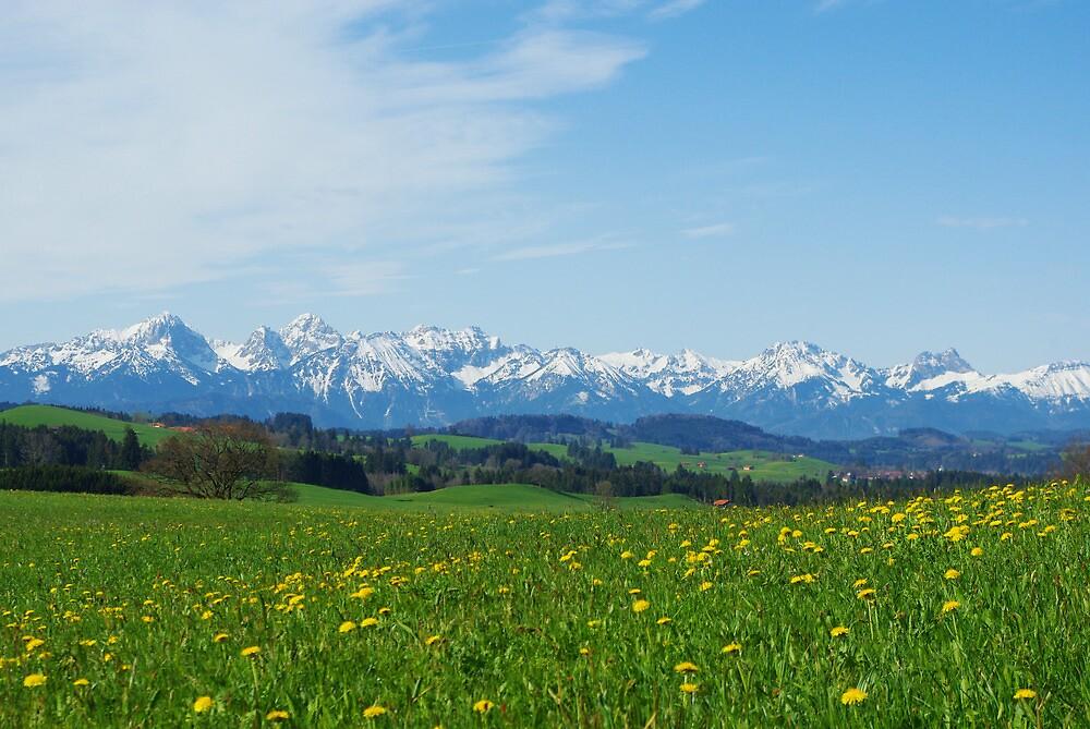 Alps, Germany by Claudio Del Luongo