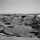 People on the rocks by Larry McLean