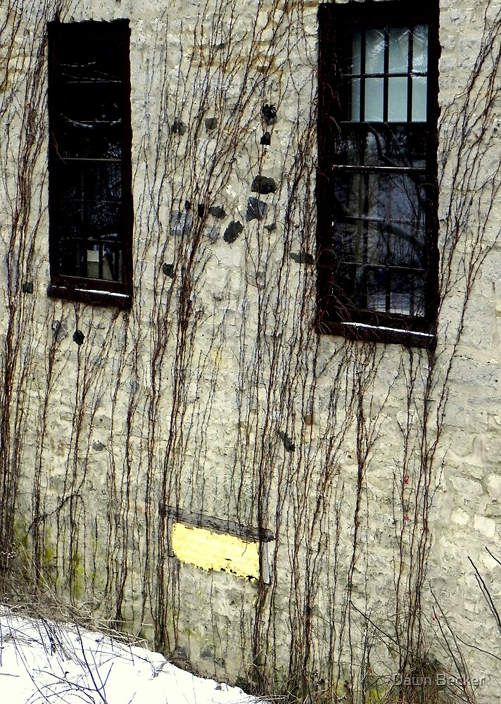 Happy home © by Dawn Becker