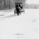The Snowy Road by Leann Moses Rardin