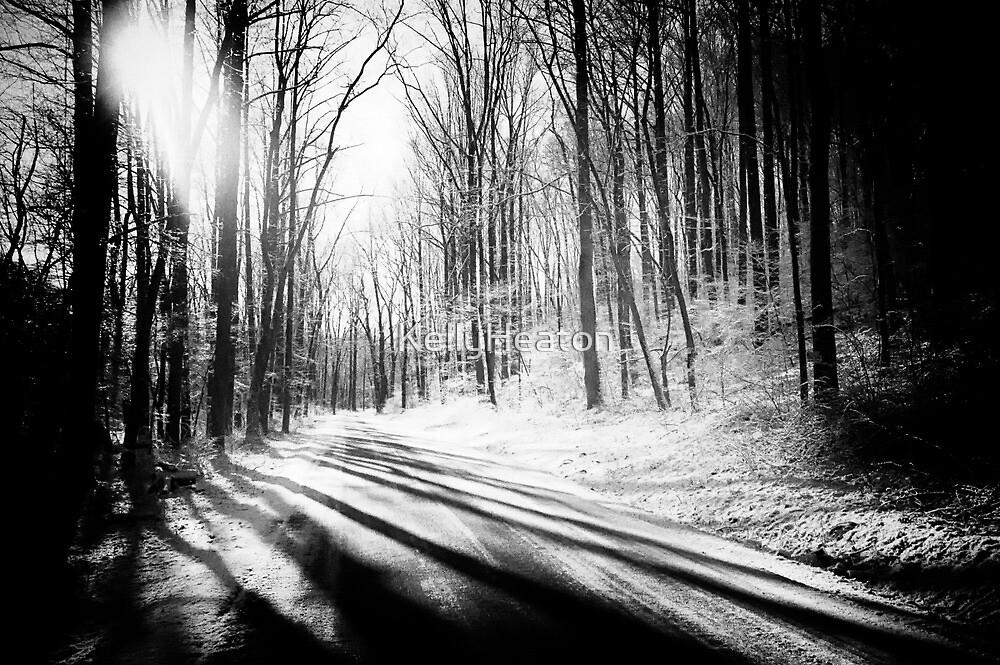 Snow and Tree Shadows by KellyHeaton