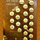 Ideal pipe organ by Jenny Setchell